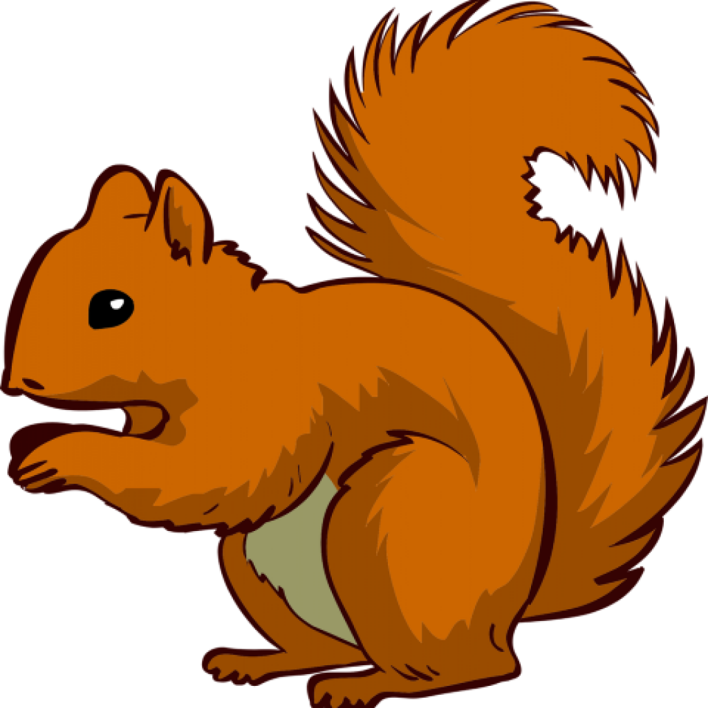 free squirrel clipart at getdrawings com free for cute panda clipart free cute red panda clipart