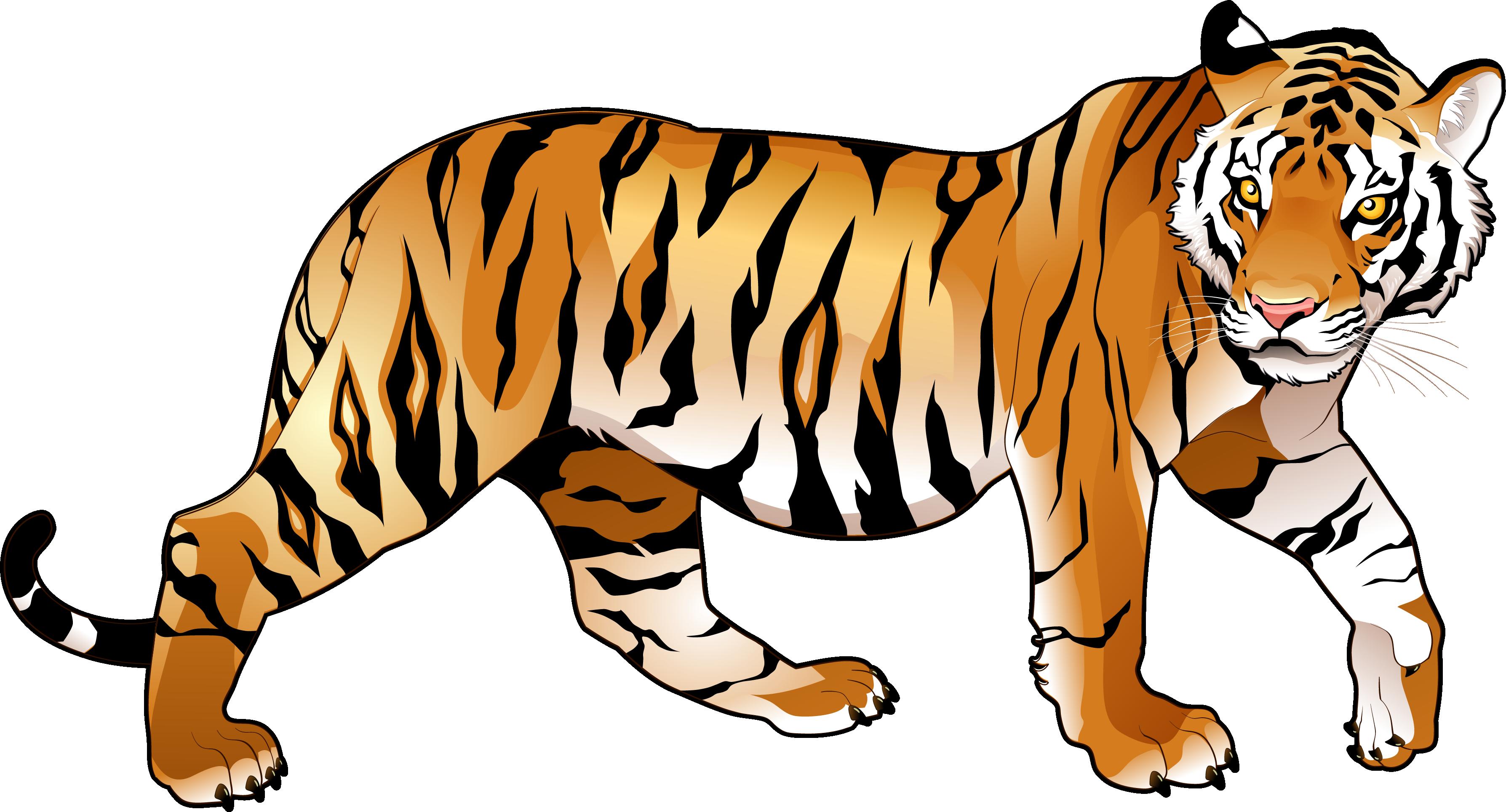 3576x1929 Tiger Clip Art Amp Tiger Clipart Images