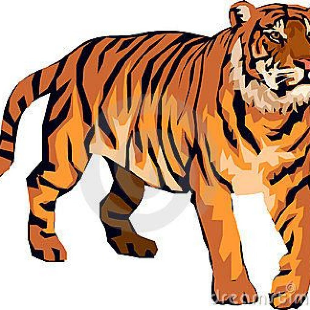 1024x1024 Tiger Clipart Images