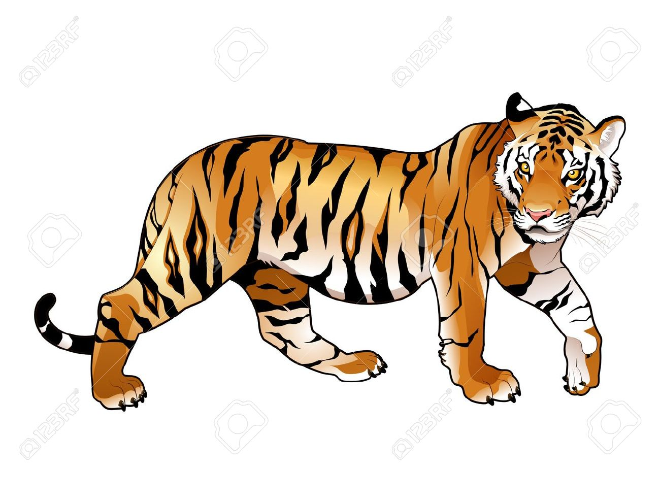 1300x993 Tiger Clip Art Images On Page 0 Yanhe Clip Art