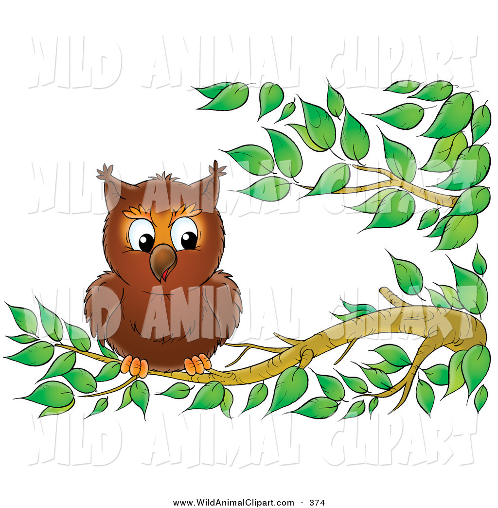 1024x1044 Clip Art Of A Cute Wild Owl Perched On A Tree Branch By Alex
