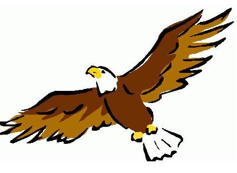 488x356 Wild Bird Clipart