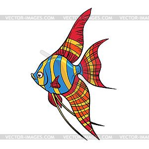 300x300 Freshwater Angelfish Aquarium Fish