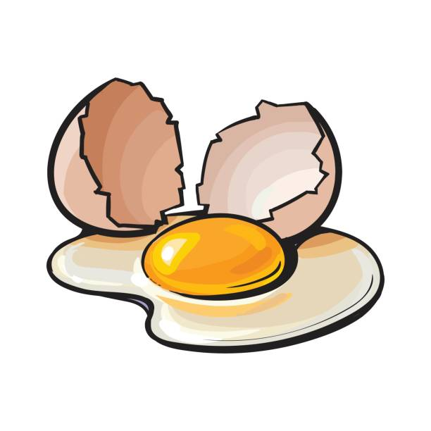 612x612 Raw Eggs Clipart Amp Raw Eggs Clip Art Images