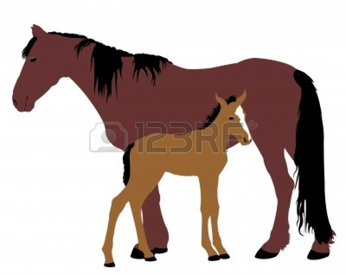 1200x954 Horse And Foal Clipart Amp Horse And Foal Clip Art Images