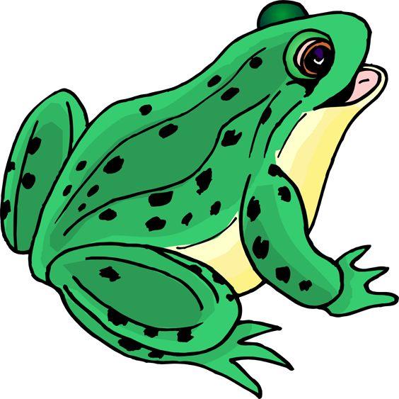 564x563 Jump Like A Frog