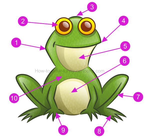 600x552 How To Draw A Frog Clip Art