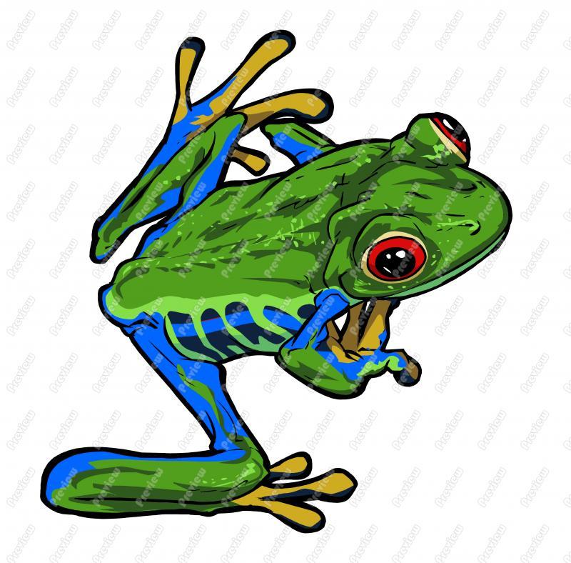 800x788 Tree Frog Character Clip Art