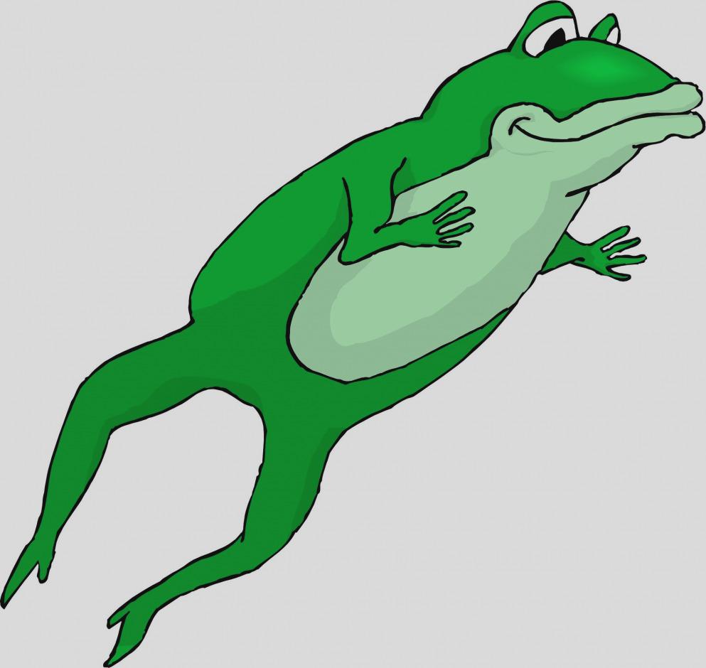 993x940 Elegant Clip Art Frog Clipart