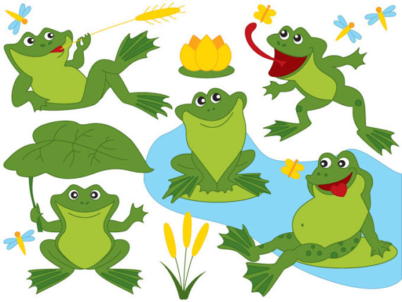 570x428 Frog Clipart