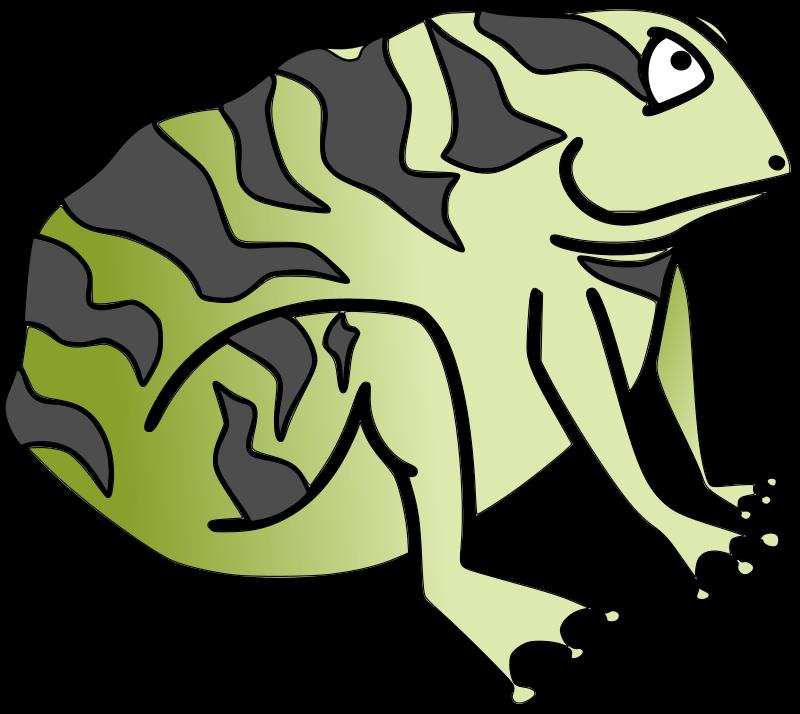 800x714 Animl Clipart Frog