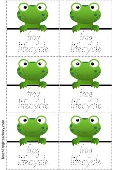 242x350 Frog Folding Life Cycle Activity By Teachezy Teachers Pay Teachers