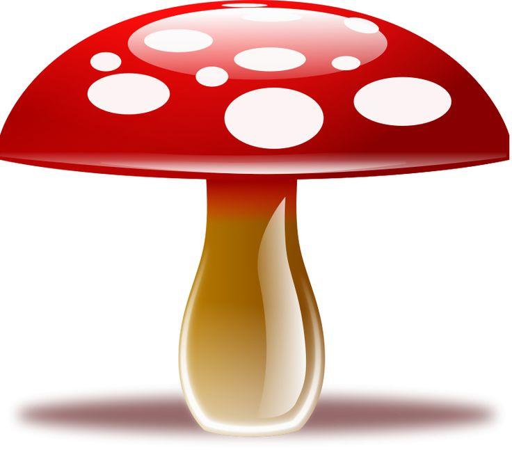 736x647 Mushroom Clipart Amp Look At Mushroom Clip Art Images