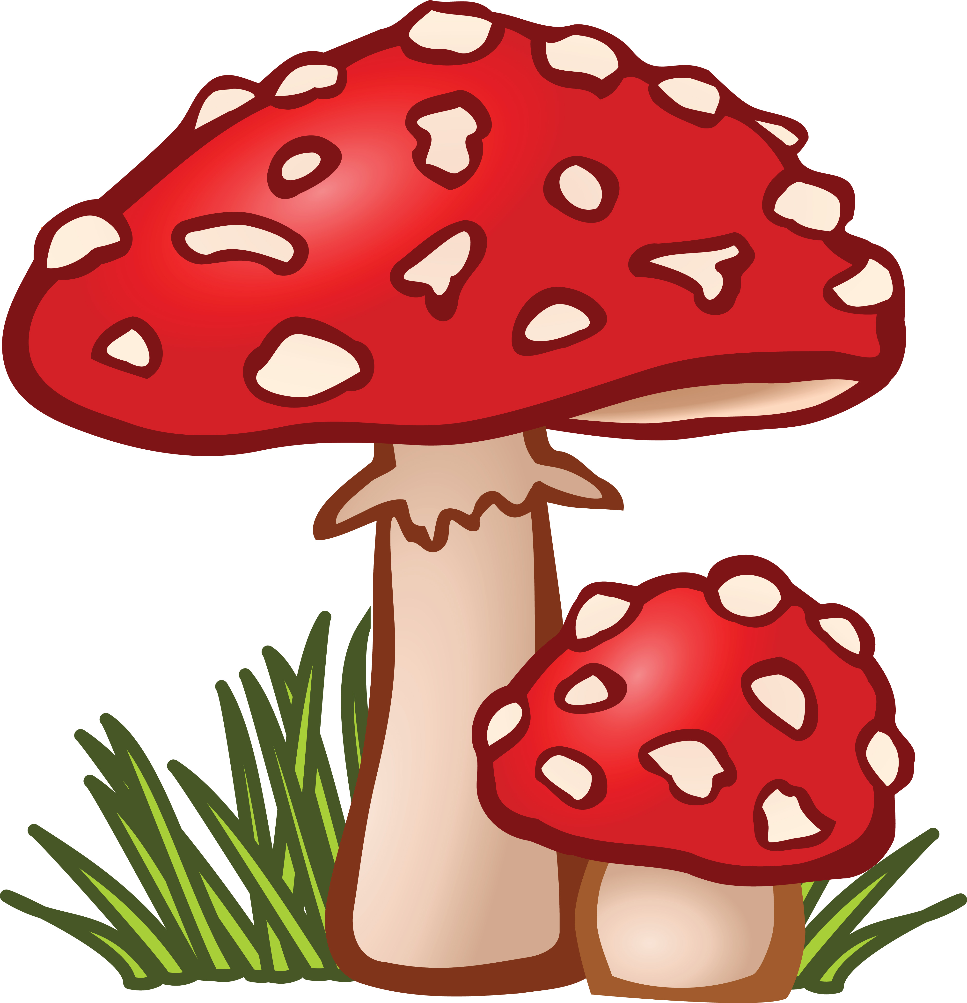 4000x4147 Collection Of Mushroom Clipart Images High Quality, Free