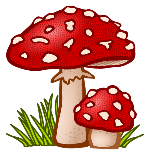 fungi clipart at getdrawings com free for personal use fungi rh getdrawings com  fungi bacteria clipart