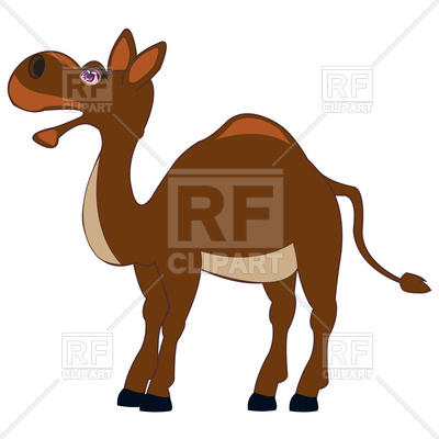 400x400 Funny Cartoon Camel On White Background Royalty Free Vector Clip