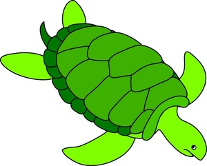 300x241 Clipart Sea Turtle Amp Look At Sea Turtle Clip Art Images
