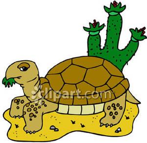 300x292 Tortoise Clipart Desert Tortoise