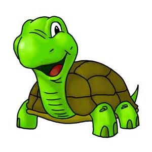 300x300 Turtle Cartoon Photos
