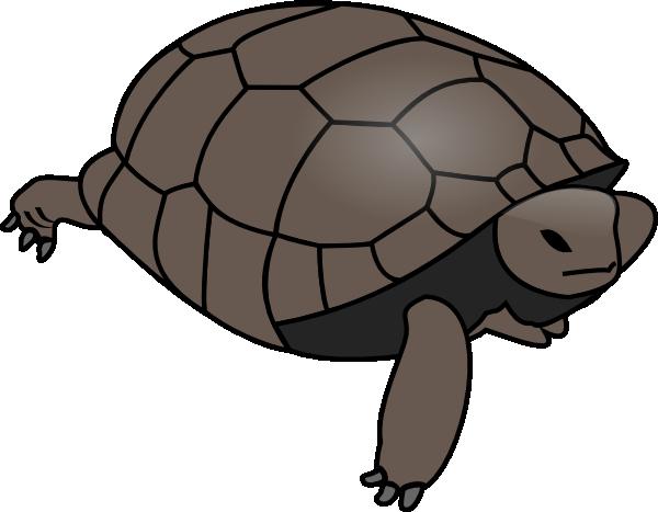 600x467 Turtle Clip Art