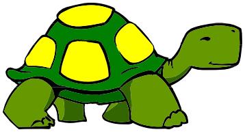 358x193 Turtle Walking Spot Color