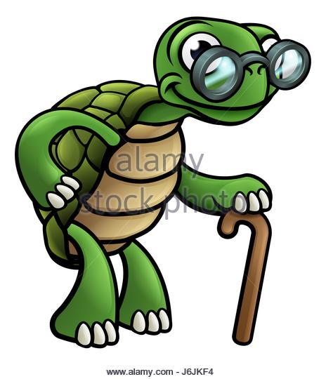 464x540 Clip Art Turtle Stock Photos Amp Clip Art Turtle Stock Images