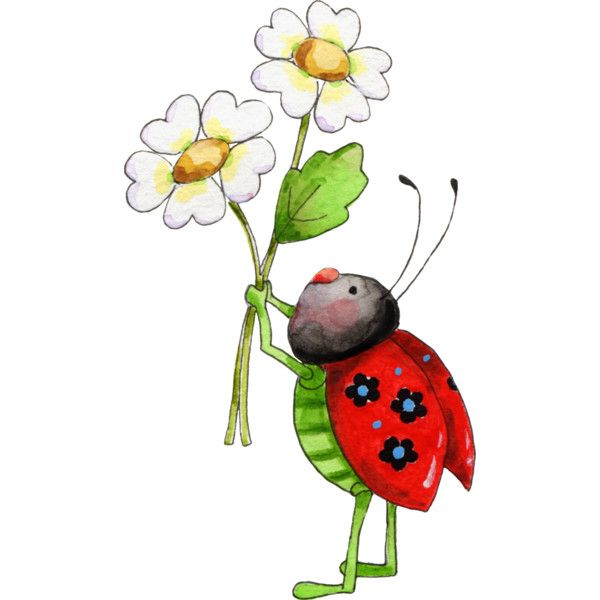 600x600 Pin By Viki On My Polyvore Finds Lady Bugs, Ladybird