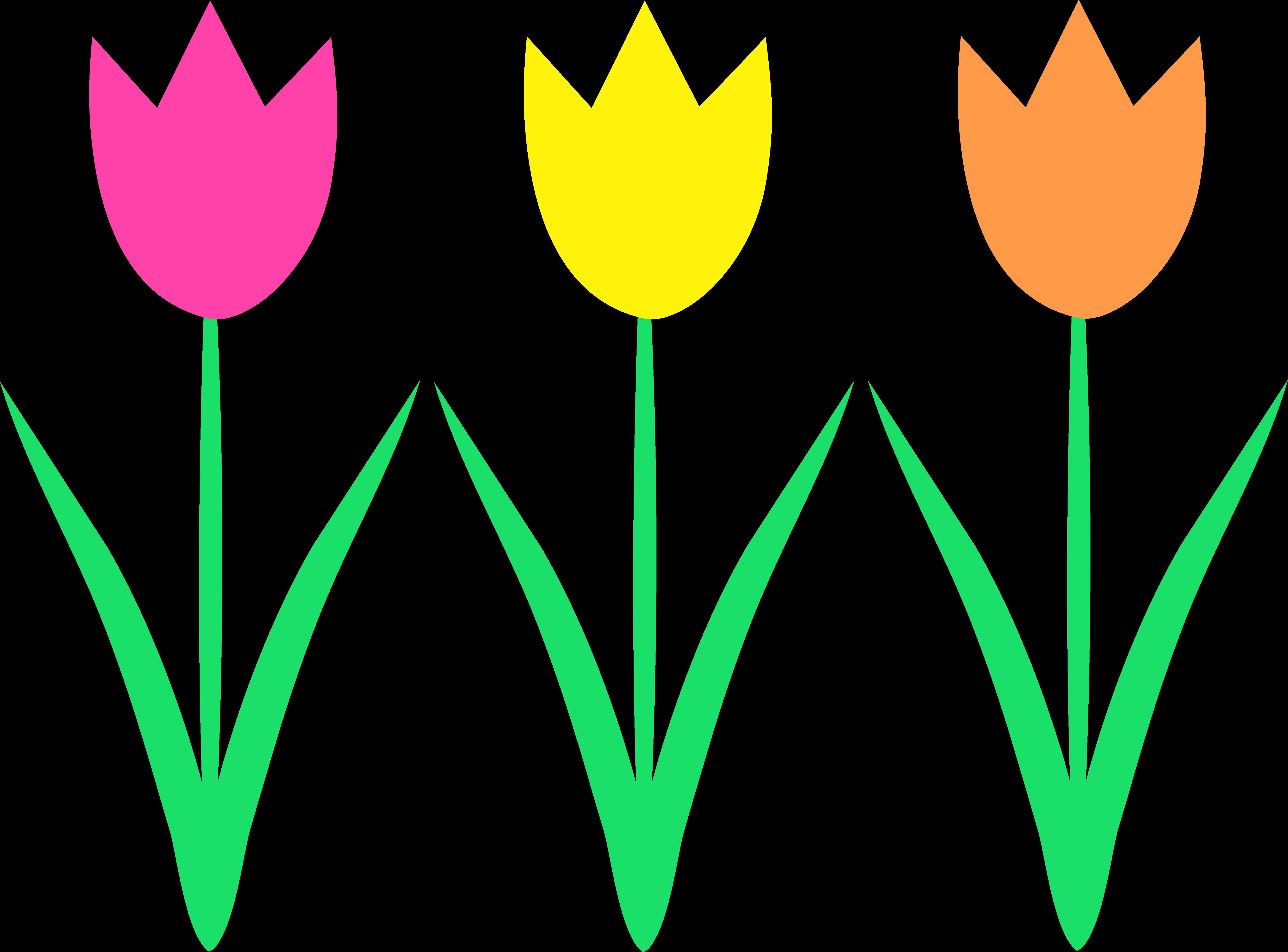 5627x4161 Garden Line Cliparts