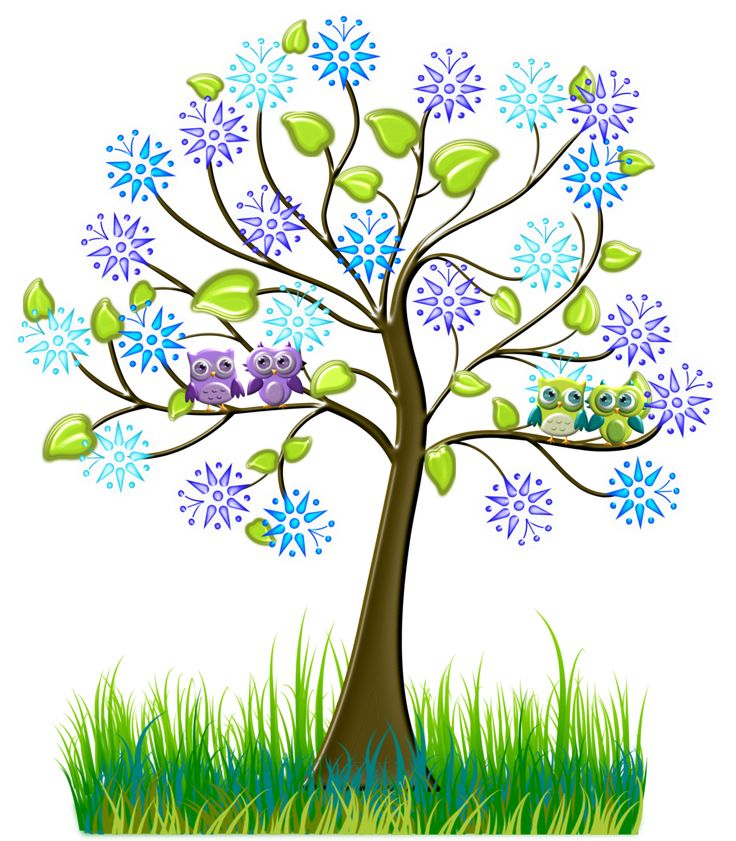 736x841 58 Best Trees Images On Clip Art, Illustrations