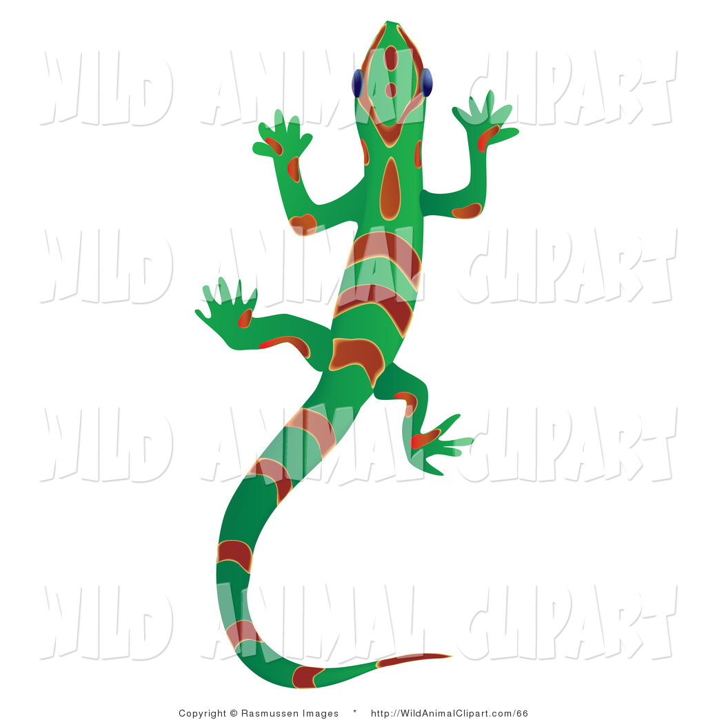 1024x1044 Clip Art Of A Green Red Gecko Lizard With Red Stripes