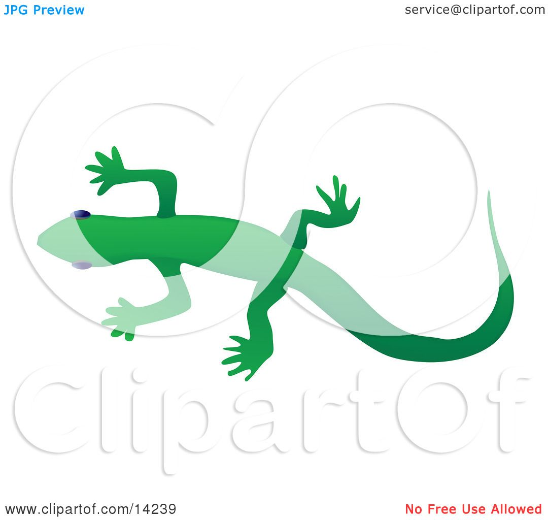 1080x1024 Solid Green Gecko Lizard Over A White Background Wildlife Clipart
