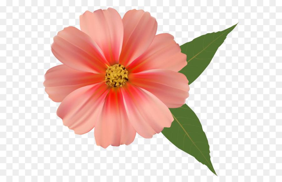 900x580 Flower Bouquet Orange Blossom Clip Art