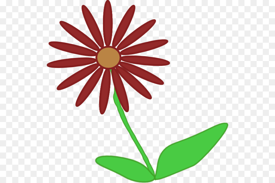 900x600 Flower Plant Stem Common Daisy Clip Art