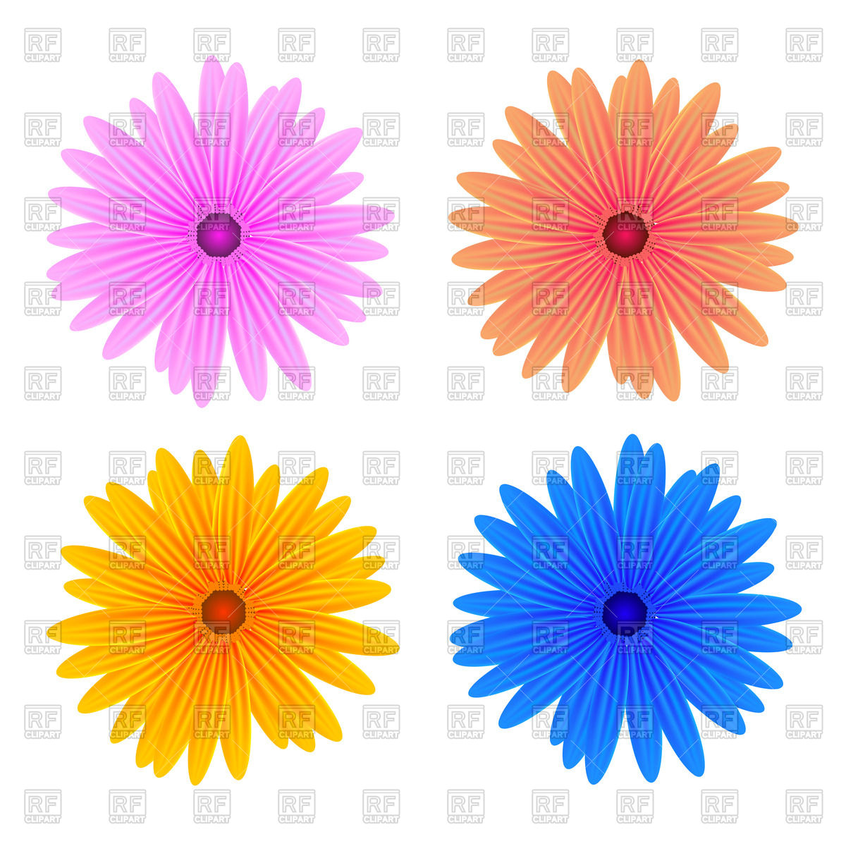 Gerbera Daisy Clipart At Getdrawings Free For Personal Use