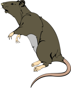 240x297 Rat Clipart Free Download Clip Art