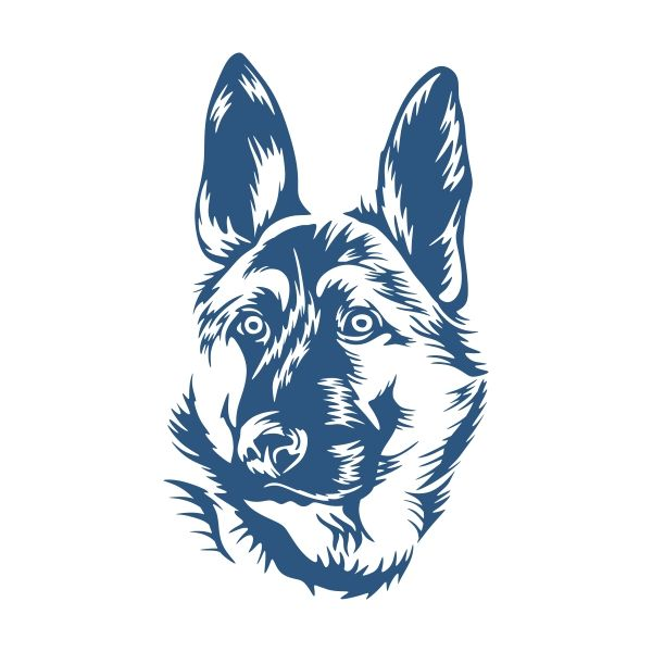 600x600 German Shepherd