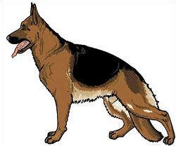 250x208 German Shepherd Clipart