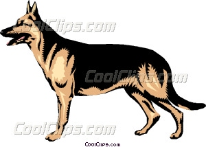 300x214 German Shepherd Vector Clip Art