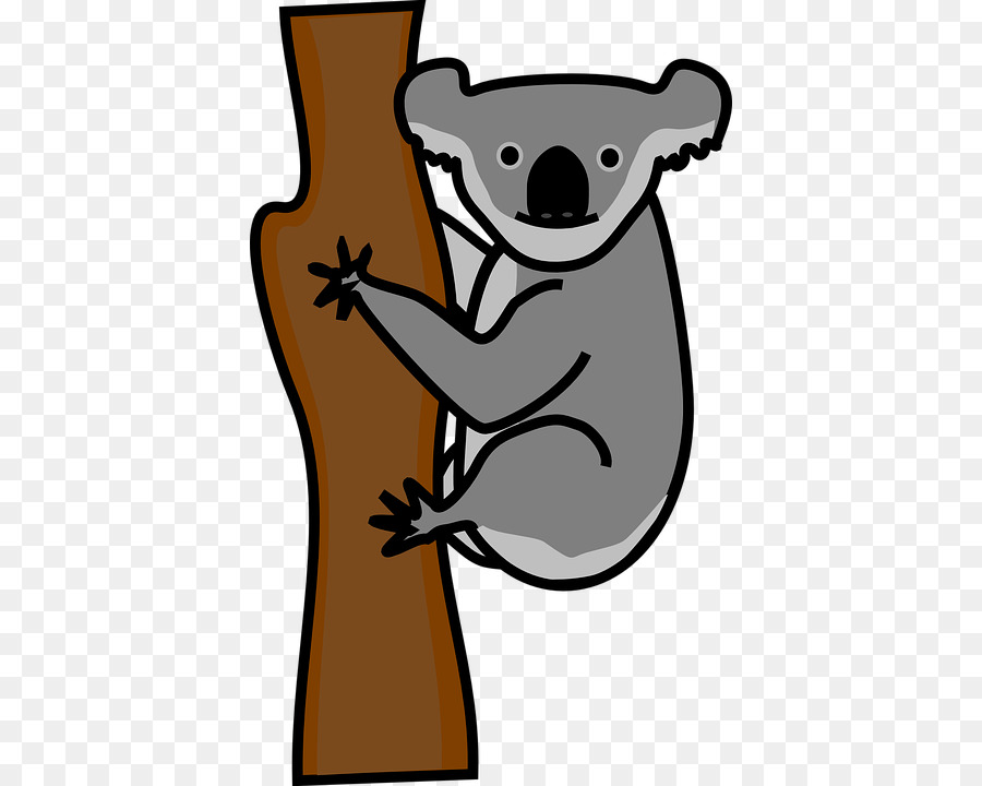 900x720 Koala Giant Panda Bear Cuteness Clip Art