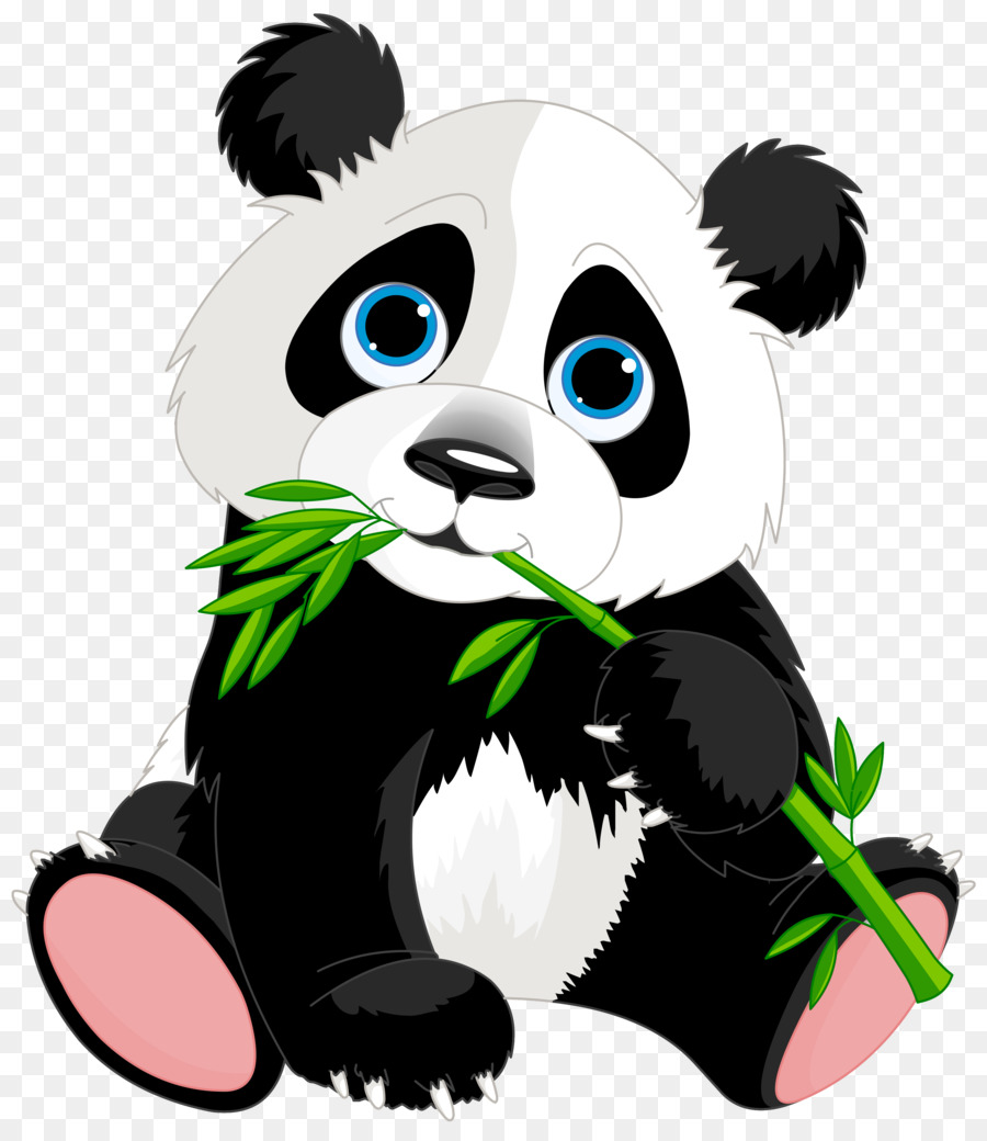 900x1040 Giant Panda Red Panda Bear Clip Art
