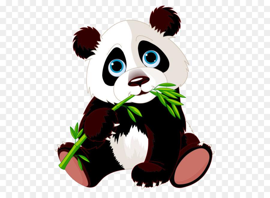 900x660 Giant Panda Stock Photography Clip Art