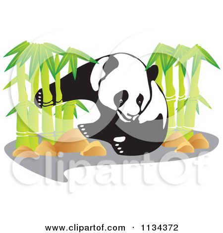 450x470 Cartoon Of A Cute Panda Eating In Front Of Bamboo