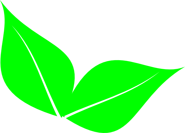 600x431 Leaf Clipart