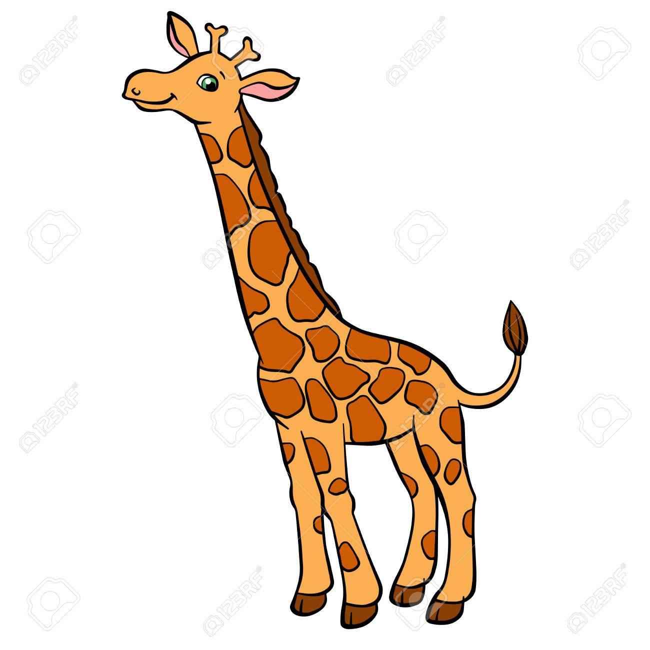 1300x1300 Fortune Giraffe Pictures For Kids Cartoon Wild Animals Little Cute