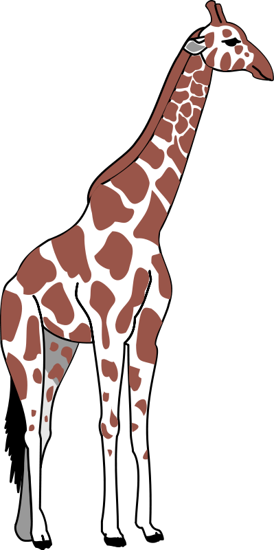 399x800 Giraffe Animal Clipart Pictures Royalty Free Clipart Pictures Org