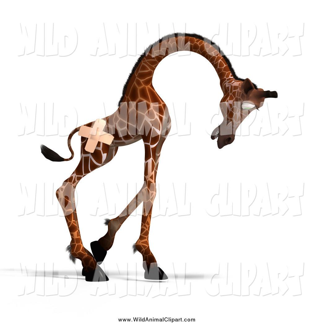 1024x1044 Giraffe Head Clip Art