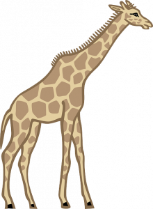 220x300 Domain Of Giraffe Free To Use Public Domain Giraffe Clip Art Page