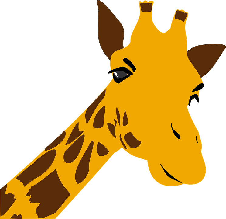 744x720 Giraffe Black And White Clip Art Images Free Download