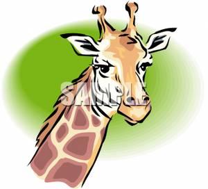 300x272 Clip Art Image The Head Of A Giraffe