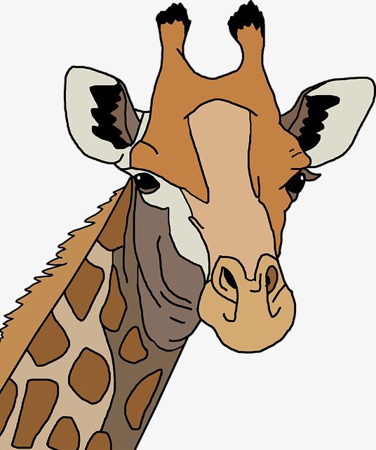 536x640 Giraffe Avatar, Cartoon, Lovely, Hand Painted Png Image
